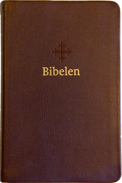 Bibel brun